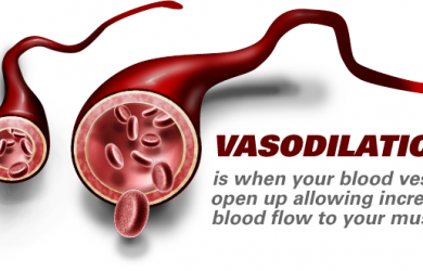 Vasoconstriction: Causes, Symptoms & Treatment
