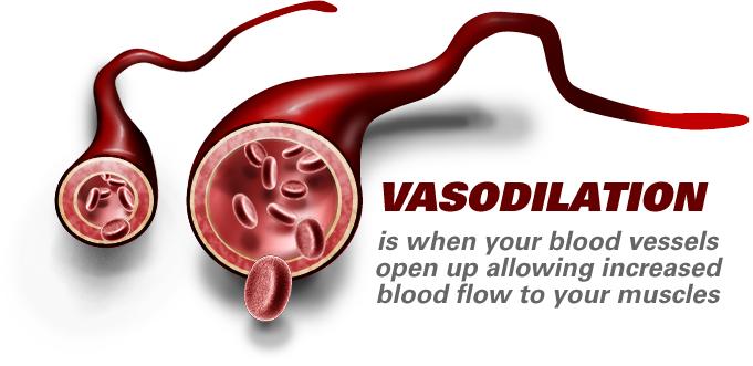 Vasoconstriction: Causes, Symptoms & Treatment