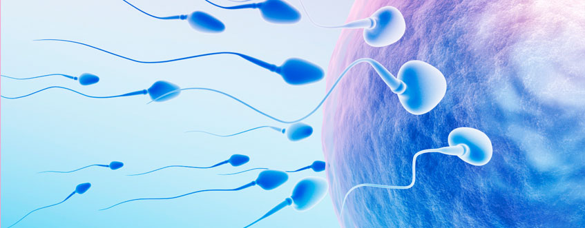 5 Male Infertility Causes You Can Control