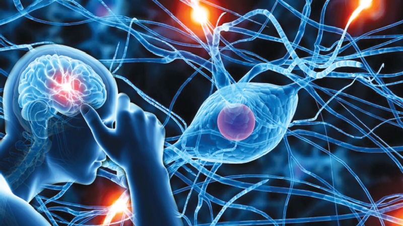 Neurological Disorders: All you need to know about Alzheimer's