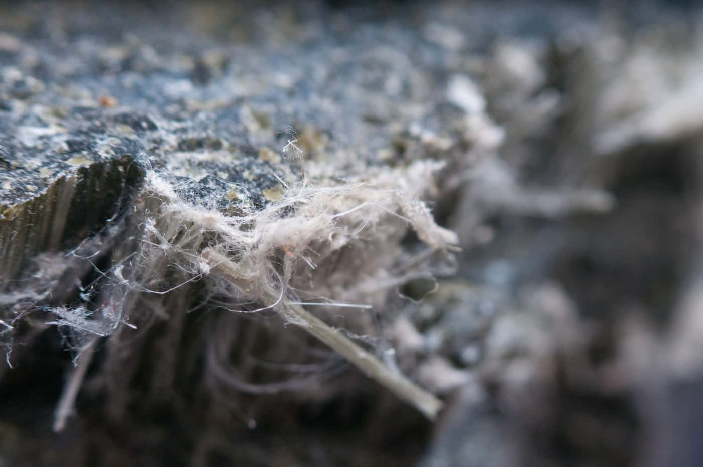 The Real Risks of Long-Term Asbestos Exposure